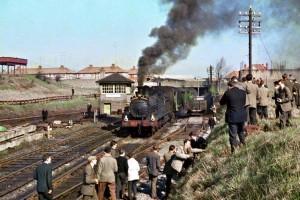 Cabra Train