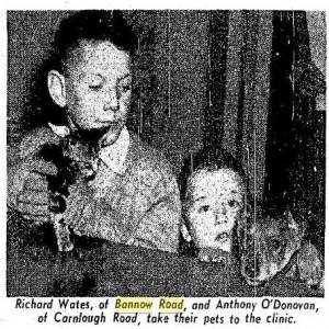 Pets 1960